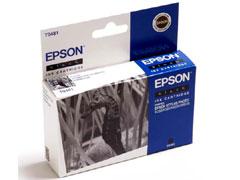 Epson T0481 fekete inkjet festékpatron